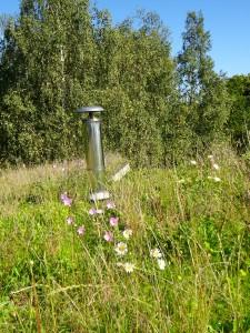 toiture vegetalisee init environnement